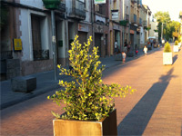 Jardineras colgantes, y alcorques de vidrio reciclado carrer Major